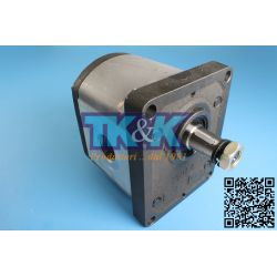 Pompa Gr. 3 Standard, forature GAS