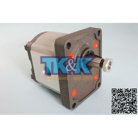 Pompa Gr. 2 Standard, forature GAS